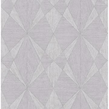 Picture of Intrinsic Silver Geometric Wood Wallpaper