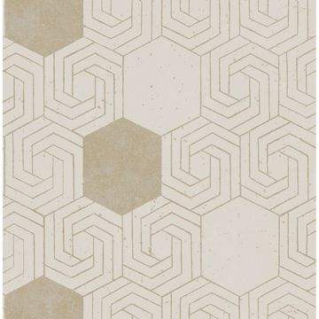 Picture of Momentum Bone Geometric Wallpaper