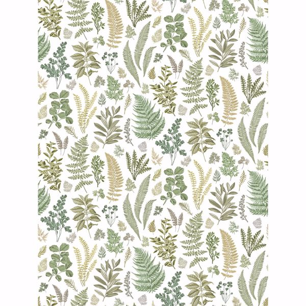 Picture of Britta Green Herbs Wall Mural