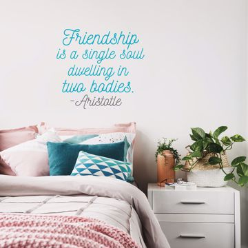 Picture of Friendship Soul Wall Quote Decals