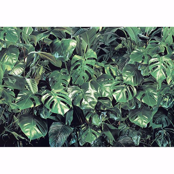 Picture of Verdure Wall Mural