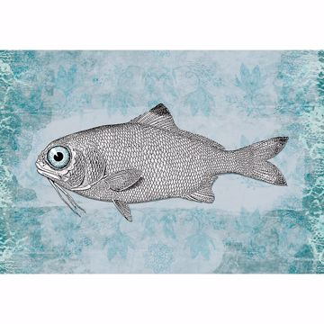 Picture of Vintage Fish Non Woven Wall Mural