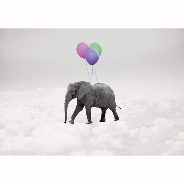 Picture of Elephant And Balloons Non Woven Wall Mural