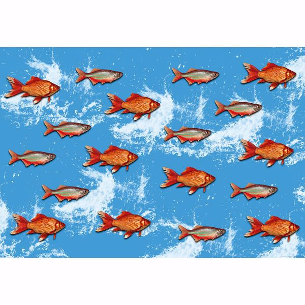 Picture of Gold Fish Non Woven Wall Mural
