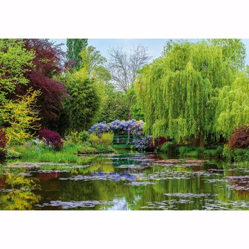 Picture of Monet's Garden In France Non Woven Wall Mural