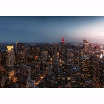 Picture of New York City Skyline Non Woven Wall Mural