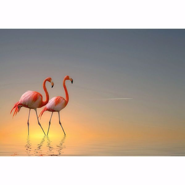 Picture of Sunrise Flamingos Non Woven Wall Mural