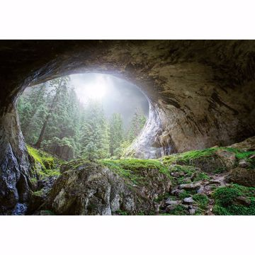 Picture of Cave In The Forest Non Woven Wall Mural