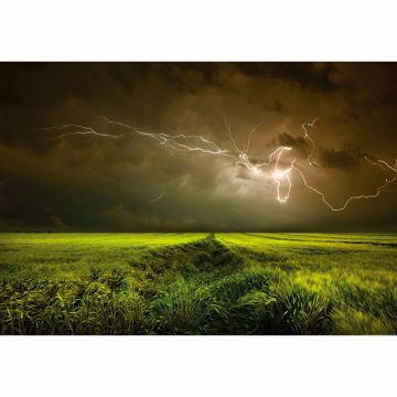 Picture of Lightning And Thunder Non Woven Wall Mural