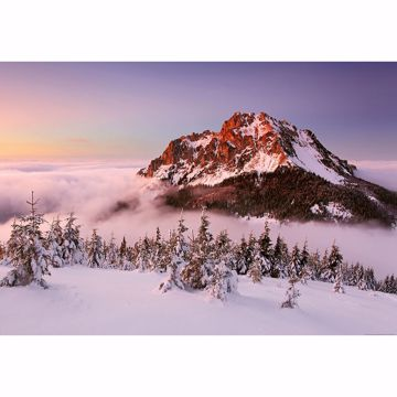 Picture of Snowy Mountain Peak Non Woven Wall Mural