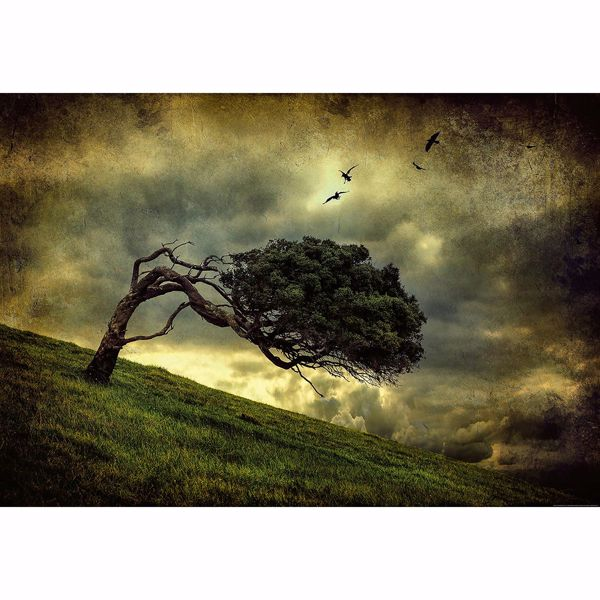 Picture of Scary Vintage Tree Non Woven Wall Mural
