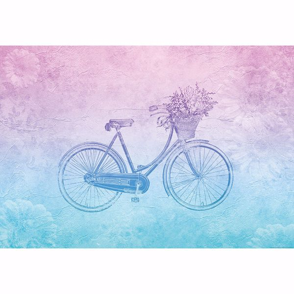 Picture of Groovy Vintage Bicycle Non Woven Wall Mural