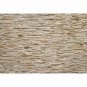 Picture of Fine Stone Wall Non Woven Wall Mural