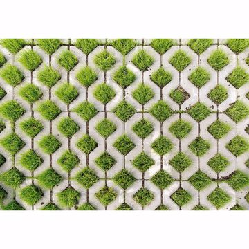Picture of Cobblestone And Grass Non Woven Wall Mural