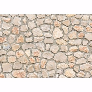 Picture of Natural Stone Wall I Non Woven Wall Mural