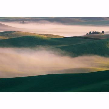 Picture of Misty Hills Wall Mural