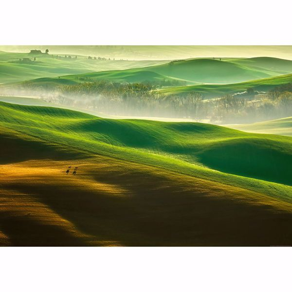 Picture of Rolling Green Hills Wall Mural