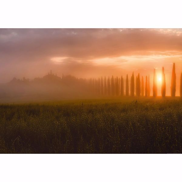 Picture of Tuscany Sun Rising Wall Mural