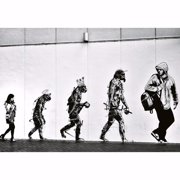 Picture of Street Art Evolution Wall Mural