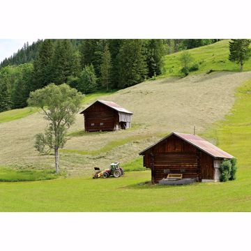 Picture of Swiss Farmhouse Wall Mural