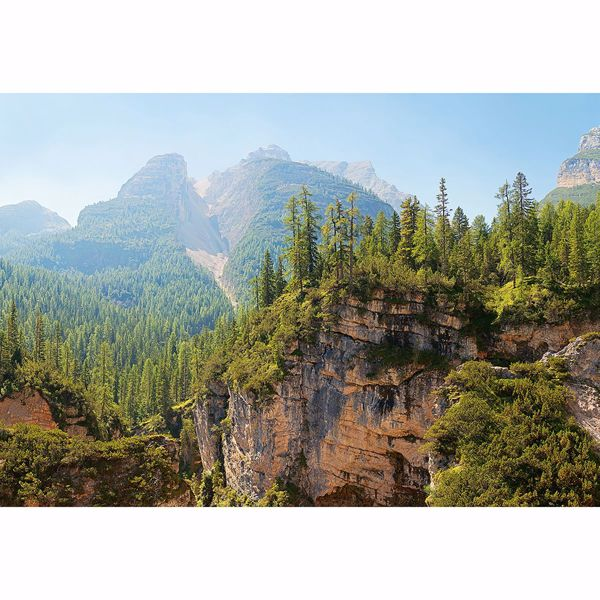 Picture of Canyon Wall Mural