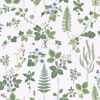 Picture of Stormare Green Botanical Wallpaper