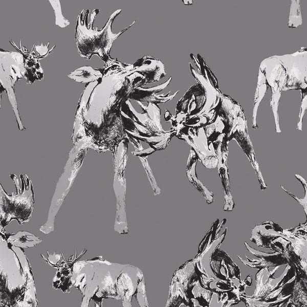 Picture of Roald Grey Moose Wallpaper