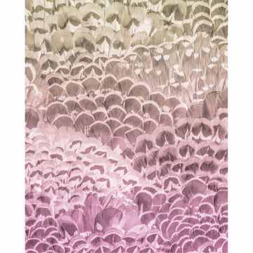 Picture of Ombre Feathers Wall Mural