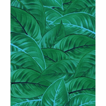 Picture of Jungle Leaves Wall Mural