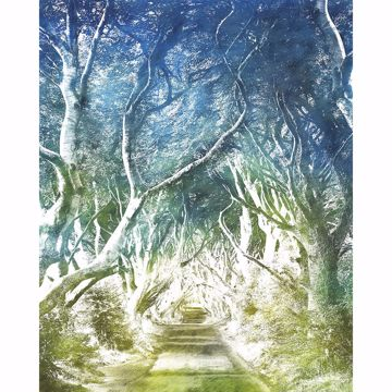 Picture of Blue Whimsical Trees Wall Mural