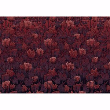 Picture of Red Tulip Wall Mural