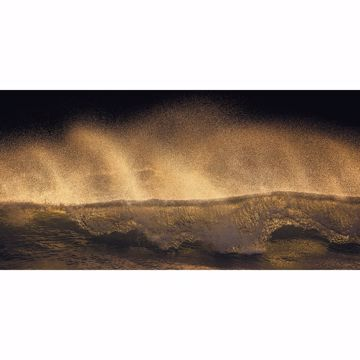 Picture of Golden Wave Wall Mural