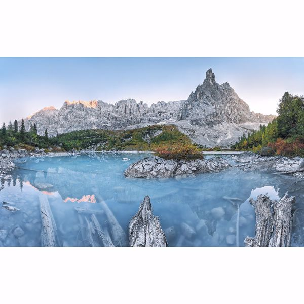 Picture of Alpine Treasure Wall Mural