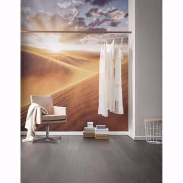 Picture of Sunrise Sanddune Wall Mural