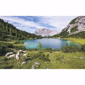 Picture of Paradise Lake Wall Mural