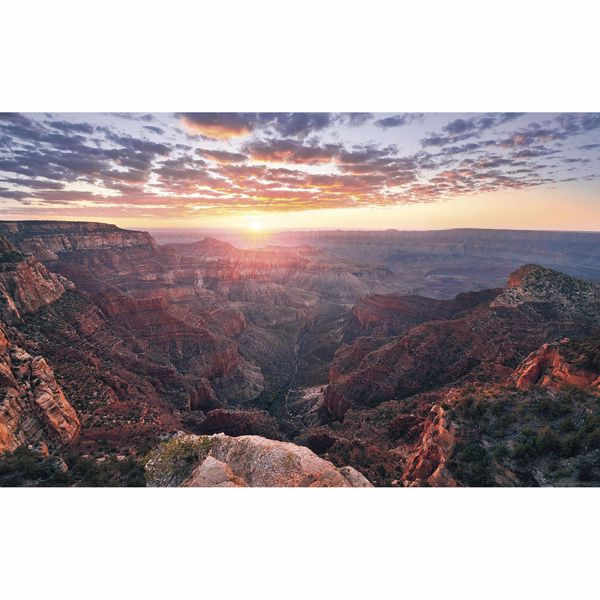 Picture of The Canyon Wall Mural