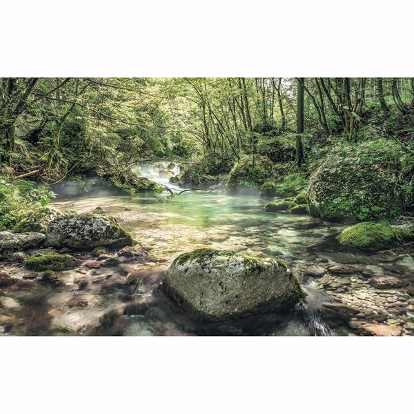 Picture of Tranquil Creek Wall Mural