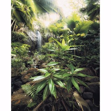 Picture of Green Foliage Wall Mural