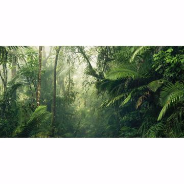Picture of Green Tropics Wall Mural