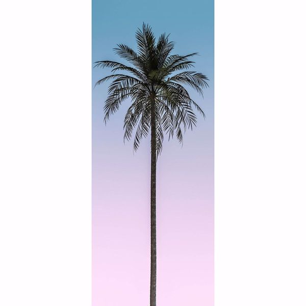 Picture of Ombre Palm Tree Wall Mural