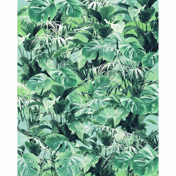 Picture of Tropical Leaves Wall Mural