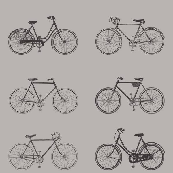 Picture of Turnblad Grey Bicycle Wallpaper