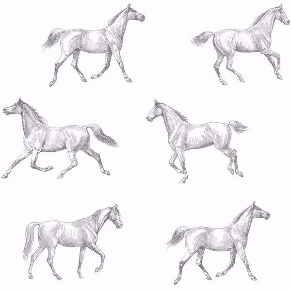Picture of Burnett Off-White Horses Wallpaper