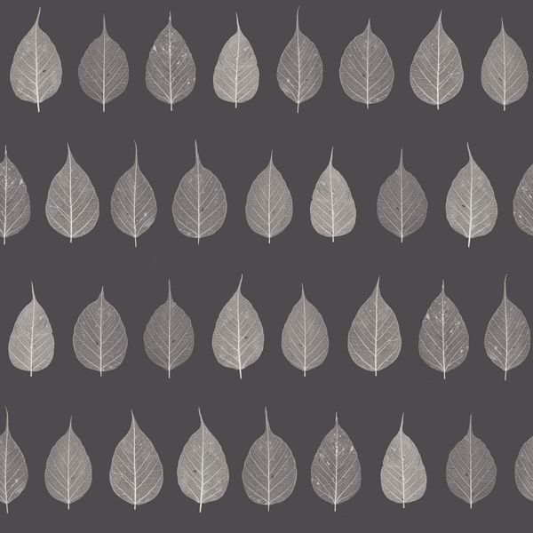 Picture of Greenhouse Charcoal Leaves Wallpaper