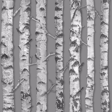 Picture of Merman Grey Birch Tree Wallpaper