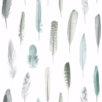 Picture of Nala Multicolor Feathers Wallpaper