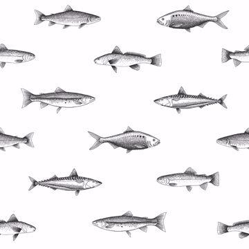 Picture of Fiyero Off-White Fish Wallpaper