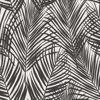 Picture of Fifi Black Palm Frond Wallpaper