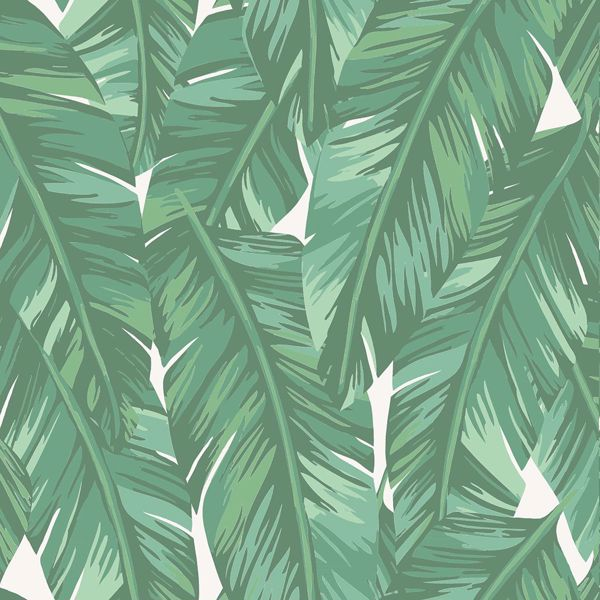 Picture of Dumott Green Tropical Leaves Wallpaper