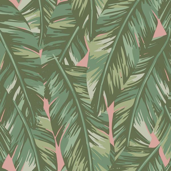 Picture of Dumott Olive Tropical Leaves Wallpaper